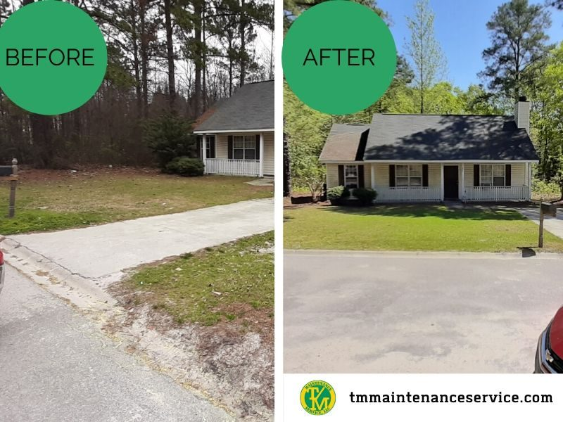 Residential Yard before and after